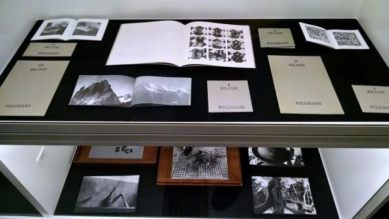 Hans-Peter Feldmann, Bilder, 1986-1972; Miguel Rio Branco, Ryuji Mitani,  Carne seca, Toluca Editions, 2008