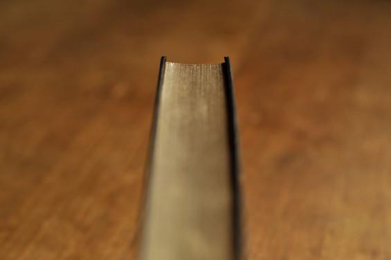 el-dia-del-libro--02