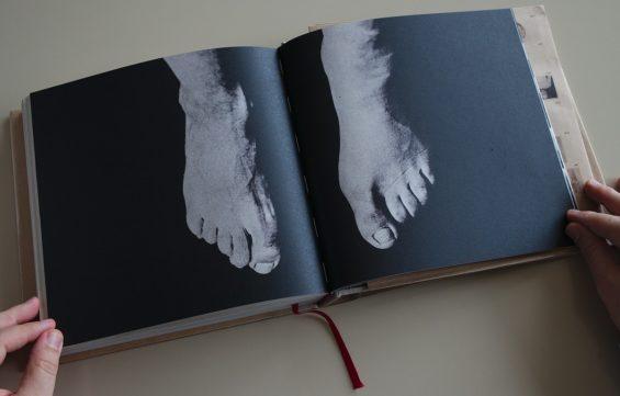 Javier Viver, Révélations: Iconographie de la Salpêtrière, RM Verlag, S.L., 2015