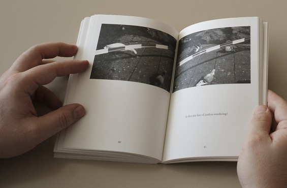 Luuk Wilmering, The man who never experienced anything, Roma Publications, 2010