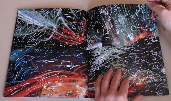 Nobuyoshi Araki, Obscenities, 1994