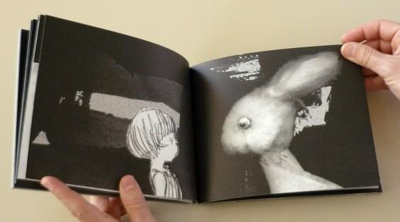 Suzy Lee, Alice in Wonderland, 2002